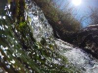Preciosos entornos naturales