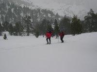 Paseo invernal por el Bosc Gerdar