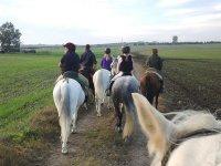 Paseo a caballo por los campos
