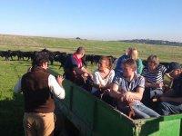 Explicando las caracteristicas del ganado