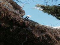 Discesa in corda doppia dopo l'arrampicata