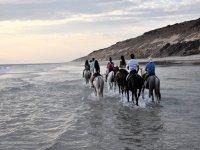 Metiéndonos en el mar con los caballos