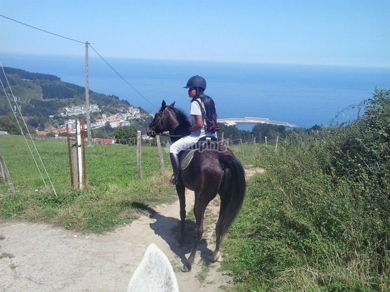 Looking at the port from the horseback