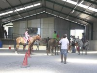 Indoor riding lessons