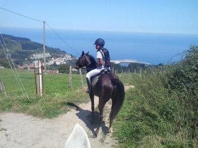 2h Horseback Route in Mutriku, Beach Views