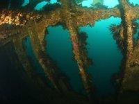Formazioni su resti affondati