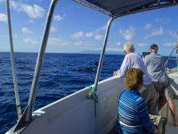 Excursion marina en barco