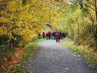 Escursionismo di gruppo