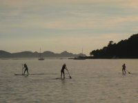 Group practicing paddle surfing