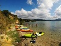 Kayaks apartados en la orilla