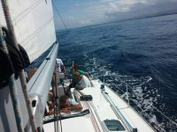 Pomeriggio in mare