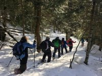 Route with friends and snowshoes