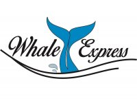 Whale Express