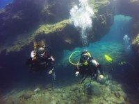 Divers in Punta de Teno
