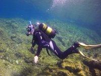Immersion in Punta de Teno