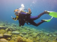 Diving in the bottoms of Tenerife