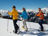 excursions for adults and children