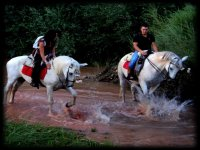 Horseback riding along the river