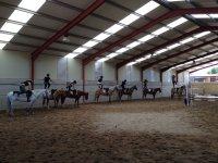 Tecnicas nuevas de equitacion