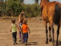 Crear vinculos entre ninos y caballos