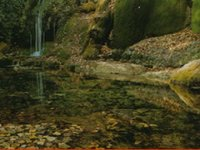 Logoripo景观梦想拉瓦内拉