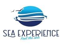 Sea Experience Ibiza Avistamiento de Cetáceos