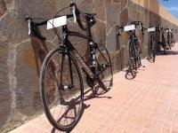 Rent road bikes Adeje