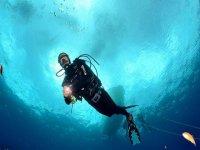 Inmersion submarina en las pitiusas