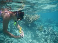 Tomando fotos bajo el agua