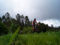 Saliendo de la arboleda en bici