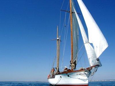 Escuela Internacional de Vela Paseos en Barco