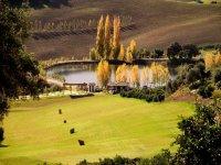 Lago, drive golf