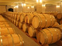 Barrels in the cellar