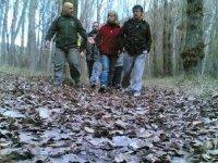 percorso attraverso la foresta.JPG