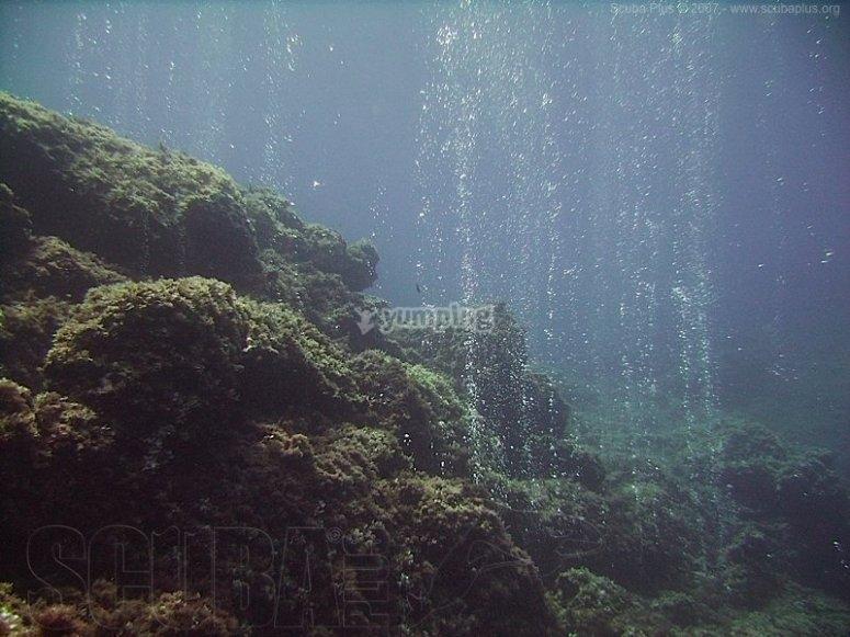 Diving courses in Menorca