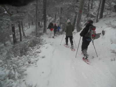 Khumbu Raquetas de Nieve