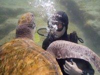 Swimming next to turtle