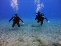 A couple diving in El Medano