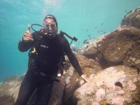 Saluting while diving