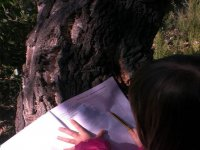 aprende en la naturaleza