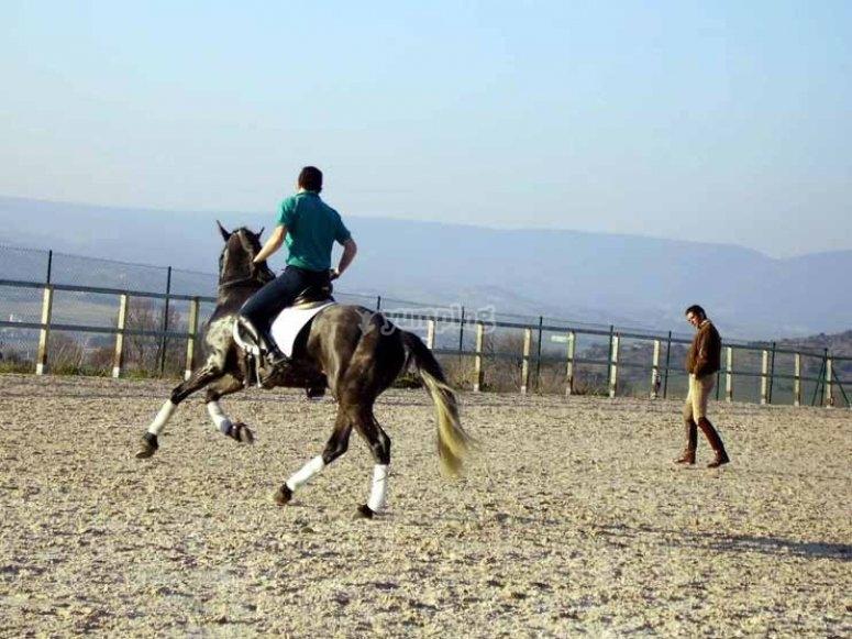 Aprende a domar al caballo