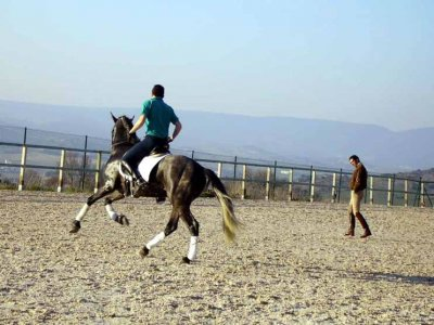 Horseback riding lessons: 15 hours pack