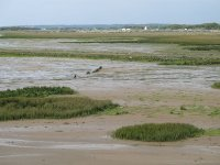 Rompido的沿海地区