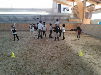 Centro Hípico Equus Duri Campamentos Hípicos