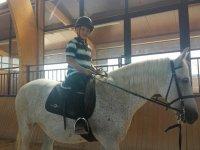 Monta en caballos