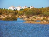 位于Huelva的Rio Piedras