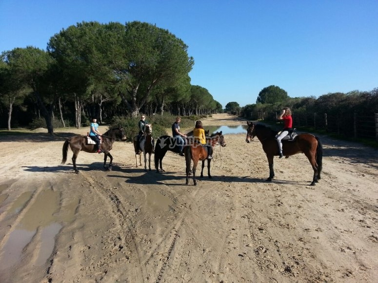 itinerario equino