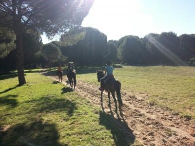 Ruta a caballo Experiencia Doñana 2 horas