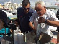Weighting the fish