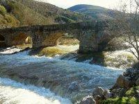 拉里奥哈(La Rioja)的旧桥